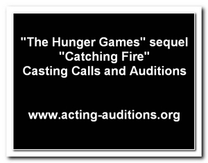 Catching Fire Auditions